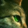 green_yey