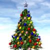 xmas, christmas, christmas tree