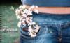 Вечная весна
