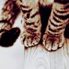 Comic Book Goddess: cats - kitty paws