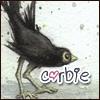 corvidophile userpic