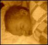 7 часов от рождения