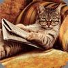sabbaoff: Кот скептик
