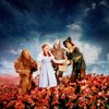 Dorothy & Friends --> in the poppy field