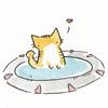 tangotabby: kitten stargate