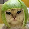 циничный сисадмин: helmet