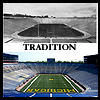 sports mich stadium tradition