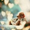 marys_angel