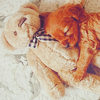 Manu: dog teddy cuddle