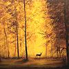 Lumina~: Seasonal - Deer