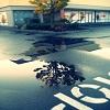 sunshinegc2009 userpic