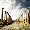 Misc - columns