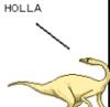 holla!, she always has a ready answer, just plain fun