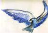 cobalt_plumage userpic