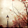 lamp post on an autumn cloudy day