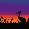 profile, tsuru, crane