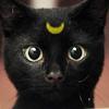 Luna, Halloween, kehleyr