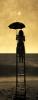 eva_shtoss userpic