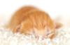 irene_f userpic