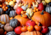 Toto_too514: Pumpkins