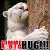 Insértese aquí una PERSONALIDAD: BIG HUG