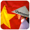 Viet (gold-lily)