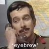 Brigadier eyebrow