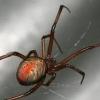 spiderink0219 userpic
