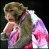 frozen_monkeys userpic