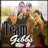 Team Gibbs