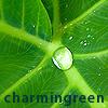 charmingreen userpic