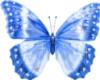 bluenahby