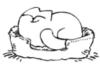 simons_cat