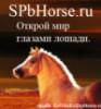 spbhorse userpic