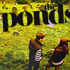 no matter how improbable: ponds with text