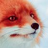 alexa_tmbl userpic