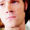 SAM; face