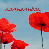 holiday nov 11 remember