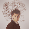 Kessy: DW//10th Doctor//Branches