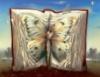librofarfalla