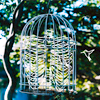 Tarja: Birdcage