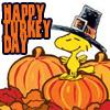addie71: (Thanksgiving) Woodstock