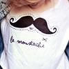 scriptedflight: moustache