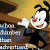 Yakko Warner: dumber than advertised