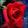 christineerin userpic