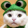 pic#catfrog