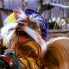 Muppets Sir Didymus Manic