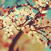 lovelydeity userpic