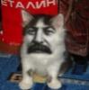 stalin troll