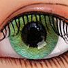 Bailey's Eye